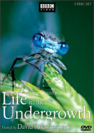 Life In The Undergrowth Movie