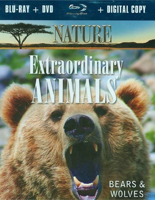 Nature: Extraordinary Animals - Bears & Wolves  Blu-ray