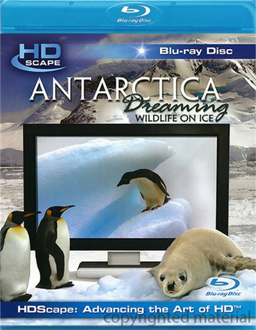 Antarctica Dreaming: Wildlife On Ice Blu-ray