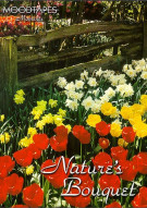 Moodtapes: Natures Bouquet Movie