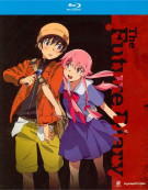 Future Diary: Complete Series Blu-ray