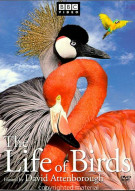 Life Of Birds, The Movie