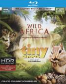 Wild Africa / Tiny Giants (4K Ultra HD + Blu-ray + UltraViolet) Blu-ray