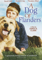 Dog Of Flanders, A Movie
