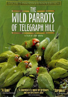 Wild Parrots Of Telegraph Hill, The: Collectors Edition Movie