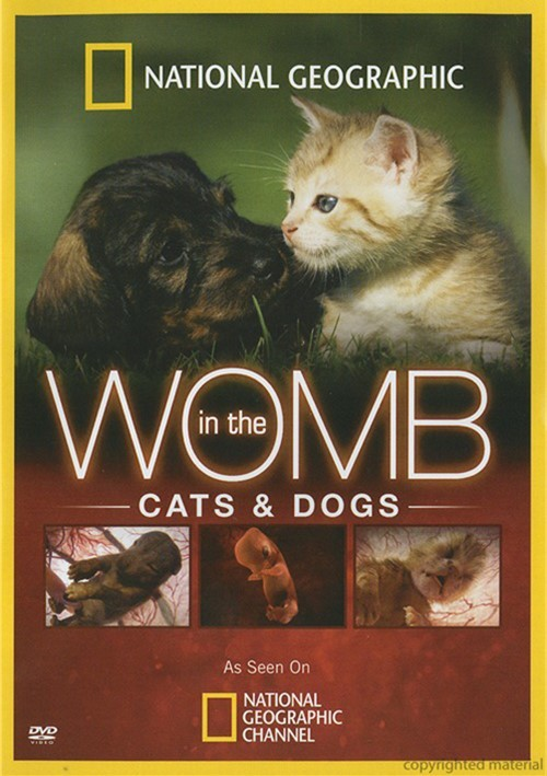 National Geographic In The Womb Cats And Dogs
