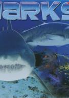 Shark Attack: Blue Demon / Hammerhead - Lunch Box 2-Pack Movie
