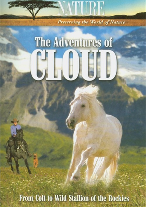 Adventures Of Cloud, The Movie