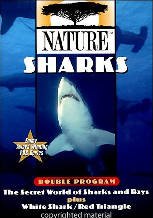 Nature: Sharks Movie