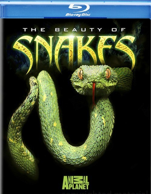 Beauty Of Snakes, The Blu-ray