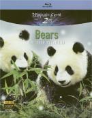 Bears Of The World Blu-ray