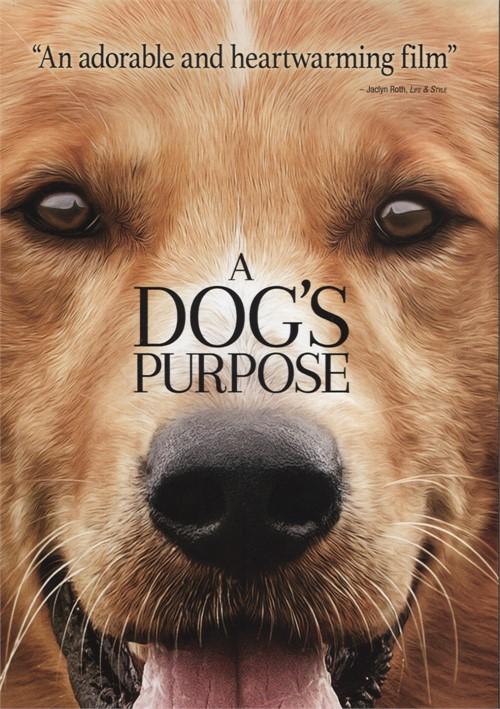 A Dogs Purpose Movie