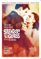 Splendor In The Grass Movie