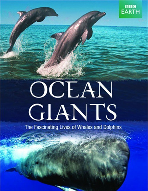 Ocean Giants (DVD + Blu-ray Combo) Blu-ray