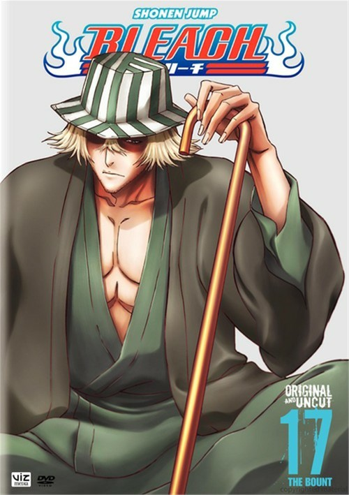 Bleach: Volume 17 Movie