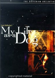 My Life As A Dog: The Criterion Collection Movie