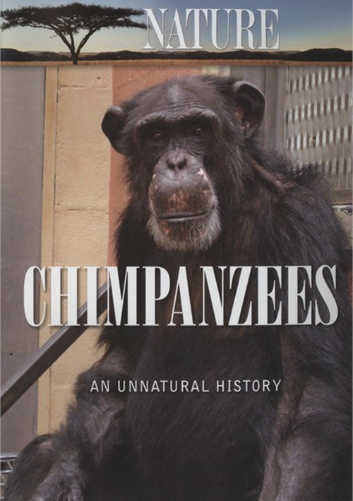 Nature: Chimpanzees - An Unnatural History Movie