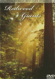 Redwood Giants Movie