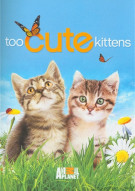Too Cute Kittens Movie