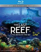 IMAX: The Last Reef - Cities Beneath The Sea (4K Ultra HD + Blu-ray 3D + Blu-ray + UltraViolet) Blu-ray
