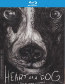 Heart Of A Dog: The Criterion Collection Blu-ray
