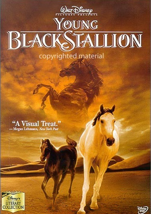 Young Black Stallion Movie