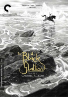 Black Stallion: The Criterion Collection Movie