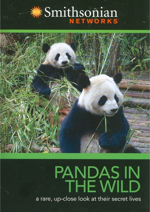 Pandas In The Wild Movie