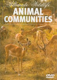 Ultimate Wildlife: Animal Communities Movie