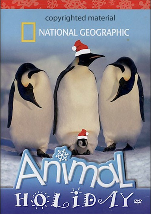 National Geographic: Animal Holiday Movie