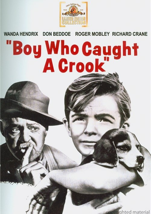 Boy Who Caught A Crook Movie