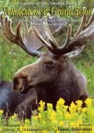 Seasons Of The National Parks: Yellowstone & Grand Teton