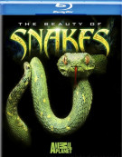 Beauty Of Snakes, The