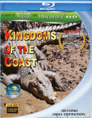 Kingdoms Of The Coast
