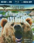 Nature: Extraordinary Animals - Bears & Wolves