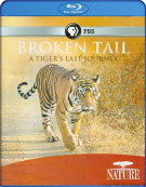 Nature: Broken Tail - A Tigers Last Journey