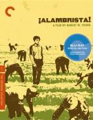 Â¡Alambrista!: The Criterion Collection