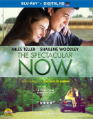 Spectacular Now, The (Blu-ray + UltraViolet)