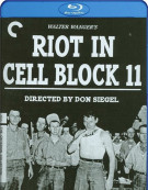 Riot In Cell Block 11: The Criterion Collection (Blu-ray + DVD Combo)