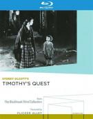 Timothys Quest