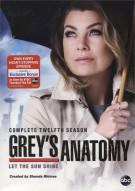 Greys Anatomy: Complete Twelfth Season