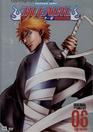 Bleach: Volume 06