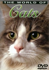 World Of Cats, The: Volume 1