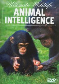 Ultimate Wildlife: Animal Intelligence