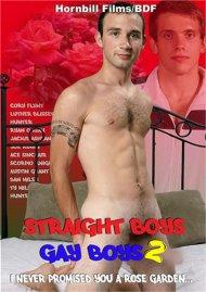 Straight Boys, Gay Boys 2: I Never Promised You a Rose Garden