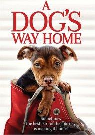 Dogs Way Home, A (DVD/W-DIGITAL)