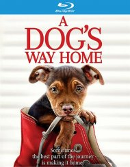 Dogs Way Home, A (BR/DVD/W-DIGITAL)