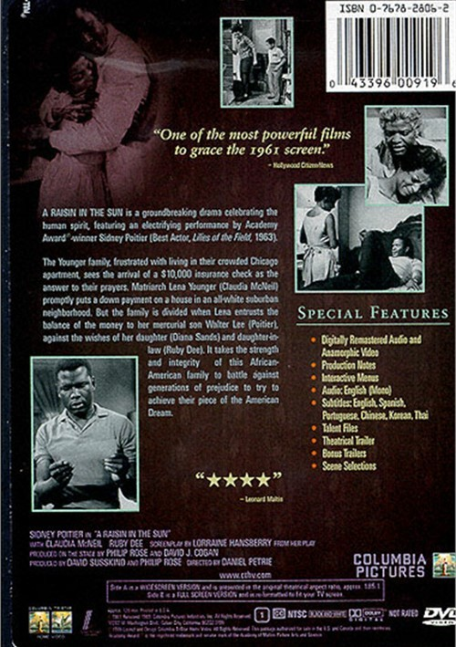 human dignity in a raisin in the sun raisin in the sun raisin in the sun is a movie that faces issues in groups as well as the aspects of culture diversity the team has reviewed the movie and we have reviewed key points to how the movie ties into the aspects of group work.