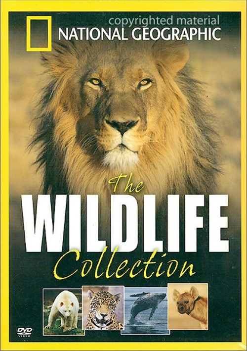 National Geographic: The Wildlife Collection