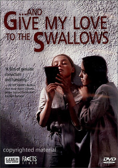 And Give My Love To The Swallows